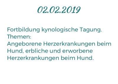 02.02.2019